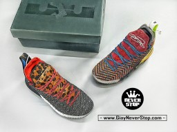 Giày NIKE LEBRON 16 WHAT THE bóng rổ nam hàng sfake chuẩn chất lượng cao hàng đẹp giá tốt nhất HCM